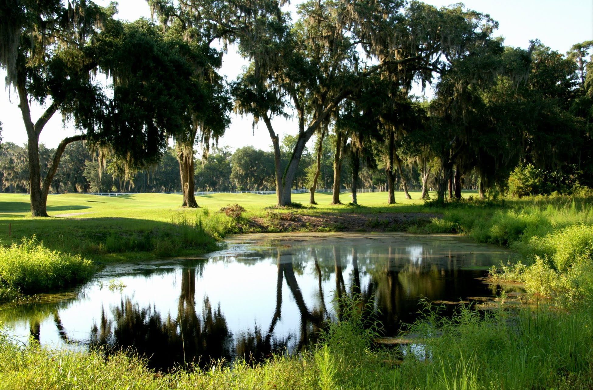 Sapelo Golf Club
