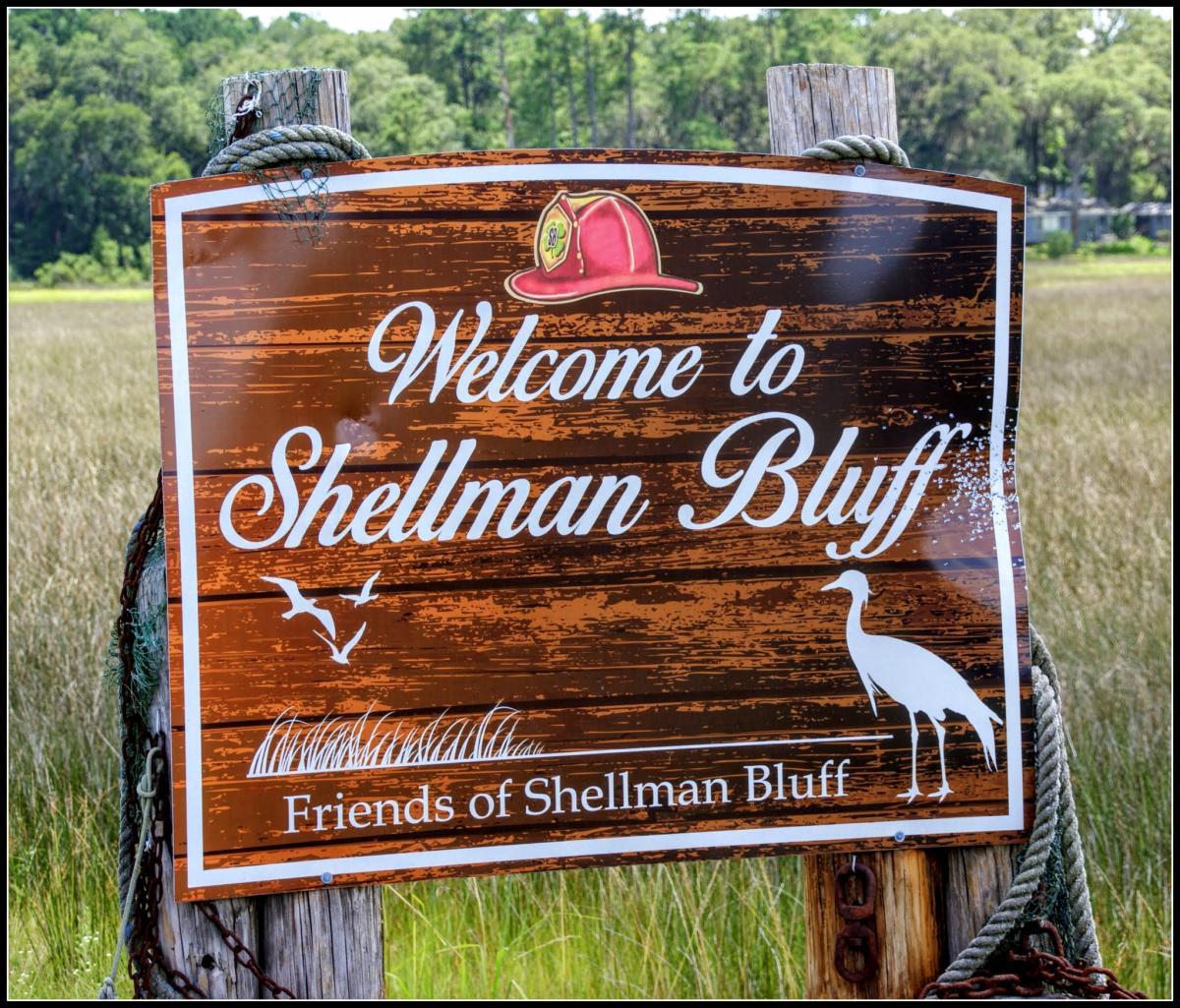 Cooper's Point Shellman Bluff1